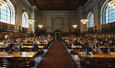 How to Set Yourself Apart as a Law School Applicant